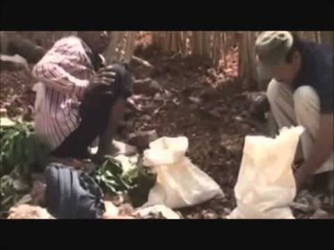 Luck Hunters - Illegal Gold Mines in Indonesia Part 1