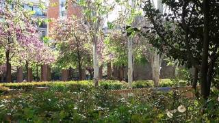 BARCELONA Jardins de Can Miralletes
