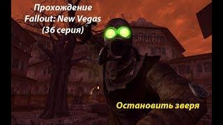 Прохождение Fallout: New Vegas (36 серия)  Остановить зверя