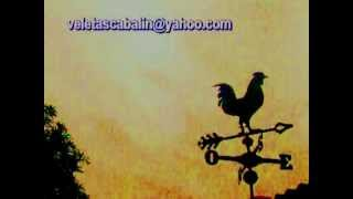 Weathervane  Rooster Waiting For The Dawn To Sing