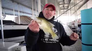 Tips on Pitching Crappie Kickers in boat docks!