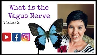 How does the Vagus nerve effect my Fibromyalgia Symptoms