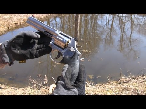 Smith & Wesson Model 686 .357 Magnum: Because You Can Ban a Magazine