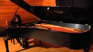 Suren Barry plays 3rd movement of Beethoven Sonata No.7 in D major