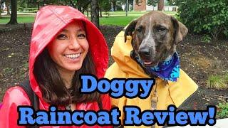 Service Dog Slicker Rain Coat Review   Service Dog Gear Tips