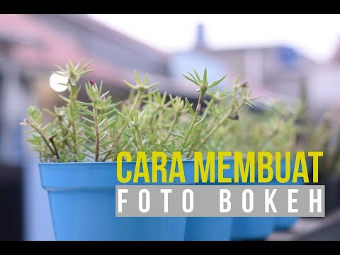 Cara Membuat Foto/Video Bokeh