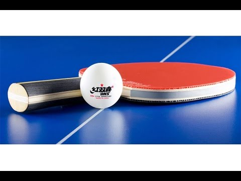 6a8c1cc1a9 bolinhas  bolas de ping pong  tennis de mesa dhs 1 estrela 40+ mm 2.8g  comprar- EnoTeq