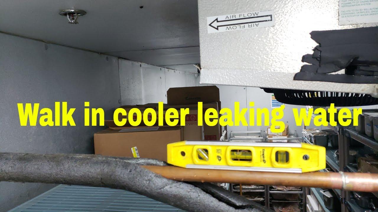 Walk In Cooler Leaking Water Youtube