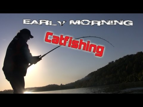 Video Discover catfishing