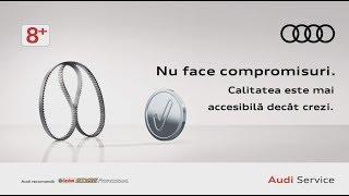 Audi Service Campanie 8+