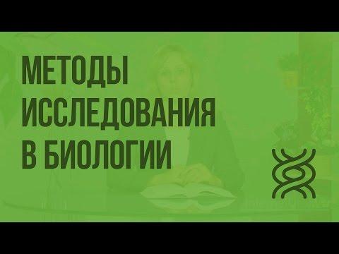 Видеоуроки по биологии 5 класс методы изучения биологии