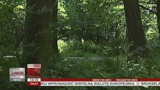 Uwaga na zwierzęta na drodze! (Raport z Polski TVP Info, 20.06.2013)