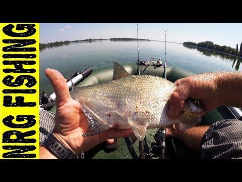 Рыбалка на донки (ЗАКИДУШКИ) | Пробный выезд