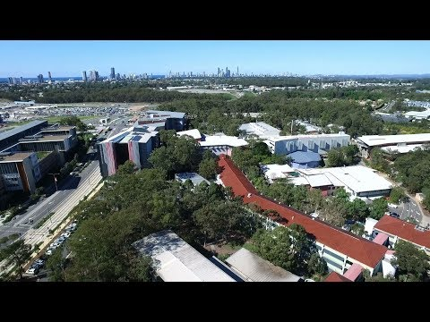 Griffith University, Gold Coast campus.