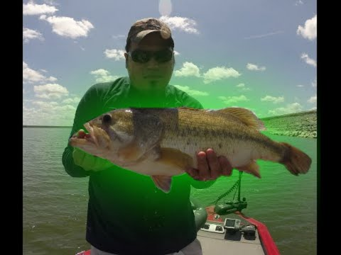 Falcon Lake: Tips And GIANT BASS!!