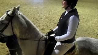 Schooling Dressage Schooling Dressage ВДНХ  Something in the way she moves...