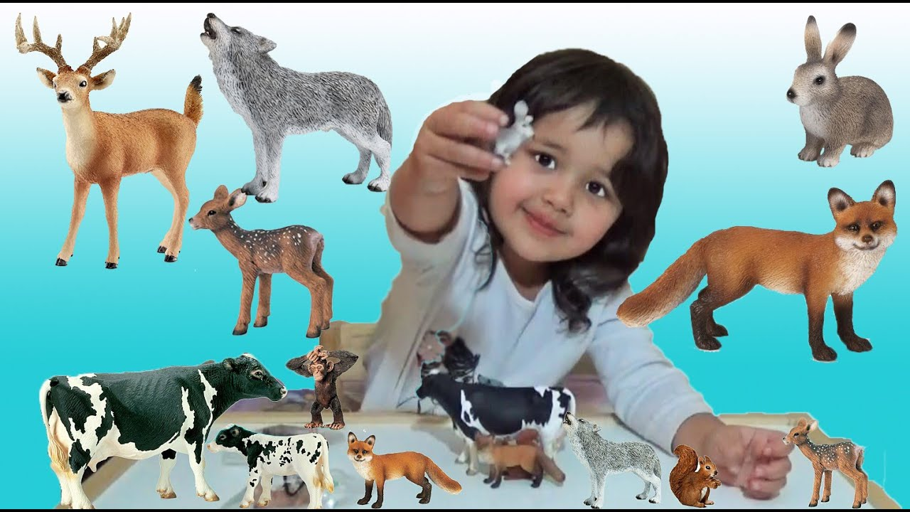 learn animal names learn animal sounds with 3 year old animal toys