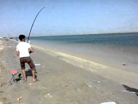 Fishing at al aryam abu youtube for Alabama fishing regulations