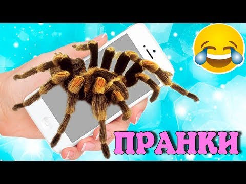ПРАНКИ 😆 РОЗЫГРЫШИ над друзьями и родителями на 1 апреля // Как разыграть друзей очень смешно - Поиск видео на компьютер, мобильный, android, ios