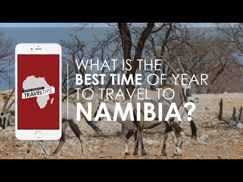 What is the best time of year to travel to Namibia? Rhino Africa's Travel Tips