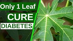 Only 1 Leaf To Cure Diabetes Permanently | Say Goodbye To Diabetes | Health Tips