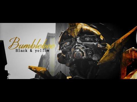 [Transformers] B U M B L E B E E    Black & Yellow