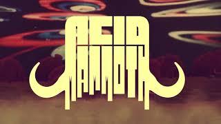Acid Mammoth - Caravan (Official Music Video)