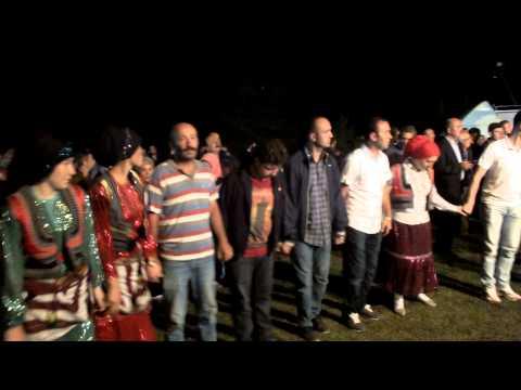 Hanyani 2015 Hava Dilli