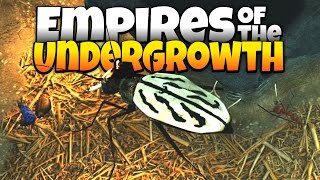Deadly Beetle Destroys Ant Colony! - Empires of the Undergrowth Gameplay - Demo Update