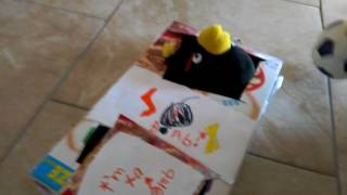 Angry Birds Plush Episode 11 - The Racing Tournament is On