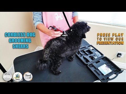 Grooming Dog Clippers