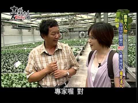 【嘉遊大人物】全球半數蘭花MIT之幕後黑手 蘭花達人