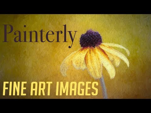 Introduction to Painterly