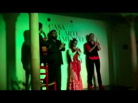 Casa Del Arte Flamenco  Granada