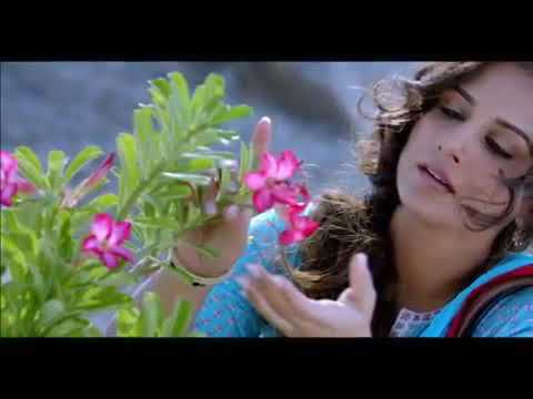 Hasi Song (Female cover)😊
