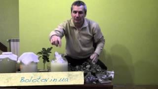 Приготовление Фермента на чистотеле (кваса). Часть 2(, 2014-06-21T20:46:37.000Z)
