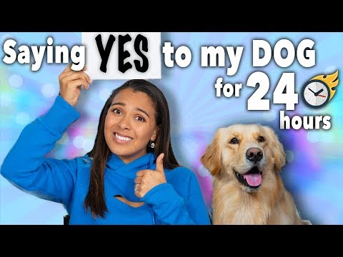 SAYING YES TO EVERYTHING MY DOG WANTS! 24 Hour Challenge! 🐶