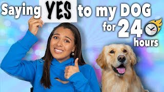 saying yes to my girlfriend for 24 hours