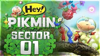 Hey!  Pikmin - Sector 1: Brilliant Garden   100% All Treasures! thumbnail