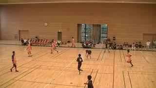 ハンドボール 平成29年度 東京都高等学校 インターハイ予選 東大和対駒澤大高
