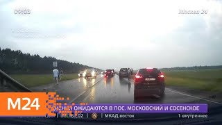 Смотреть видео Шесть человек погибли в ДТП с автобусом на трассе в Башкирии - Москва 24 онлайн