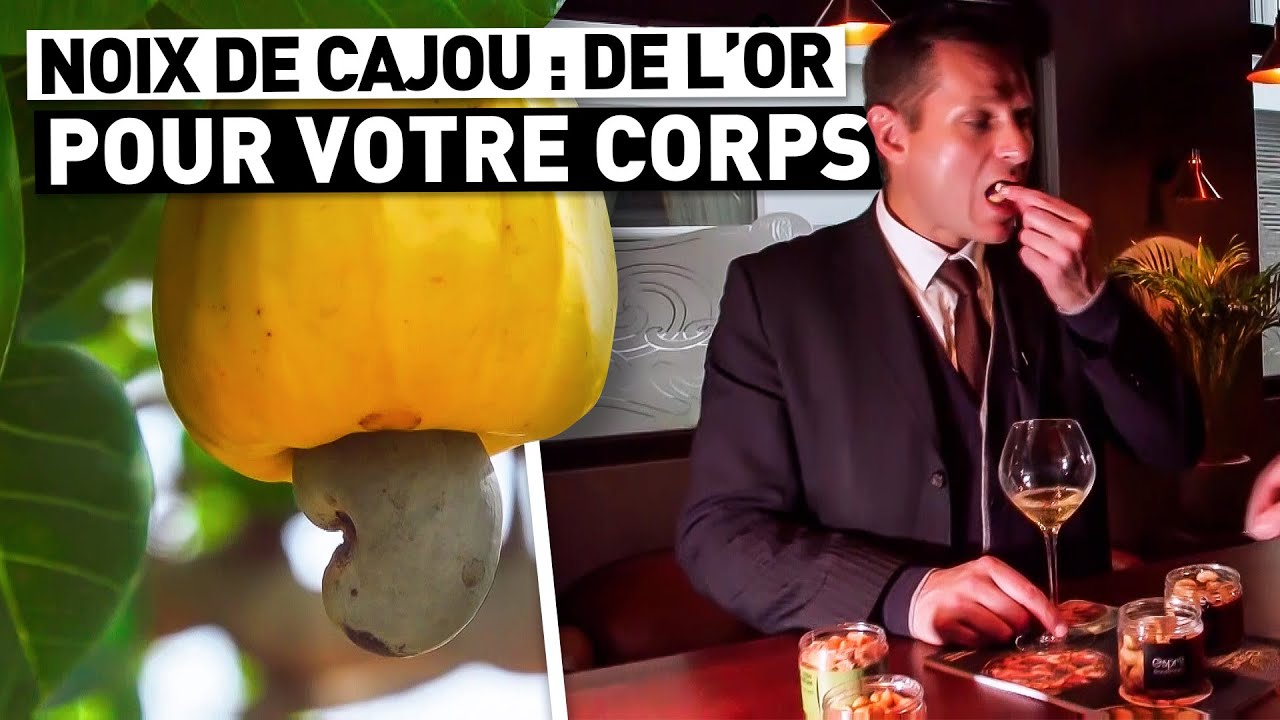 NOIX DE CAJOU : DE L'OR POUR VOTRE CORPS