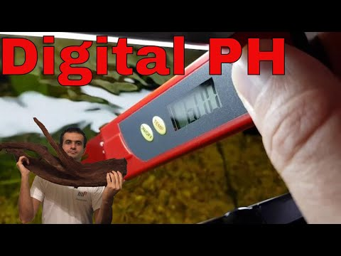 How To Use A Digital PH Tester For Aquariums