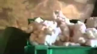 ·Рубочная машина ·Щипальная машина ·Разволокняющая машина ·Гидравлический пресс(, 2015-12-21T06:32:46.000Z)