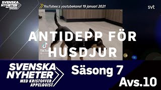 Svensk sex video