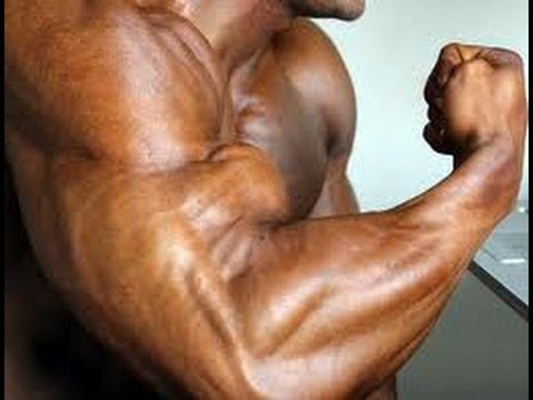 Get Big Biceps Fast: How To Dumbbell Curl For Gaining Muscular Arms ...