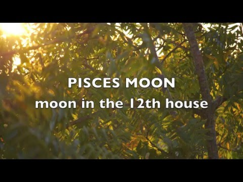 Pisces Moon/ Moon in the 12th House