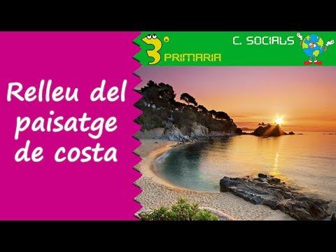 Ciències Socials. 3r Primària. Tema 6. Relleu en el paisatge de costa.