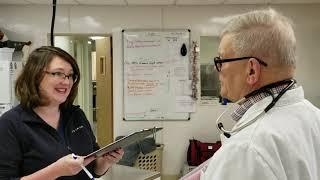 CVH Veterinarian Recruitment
