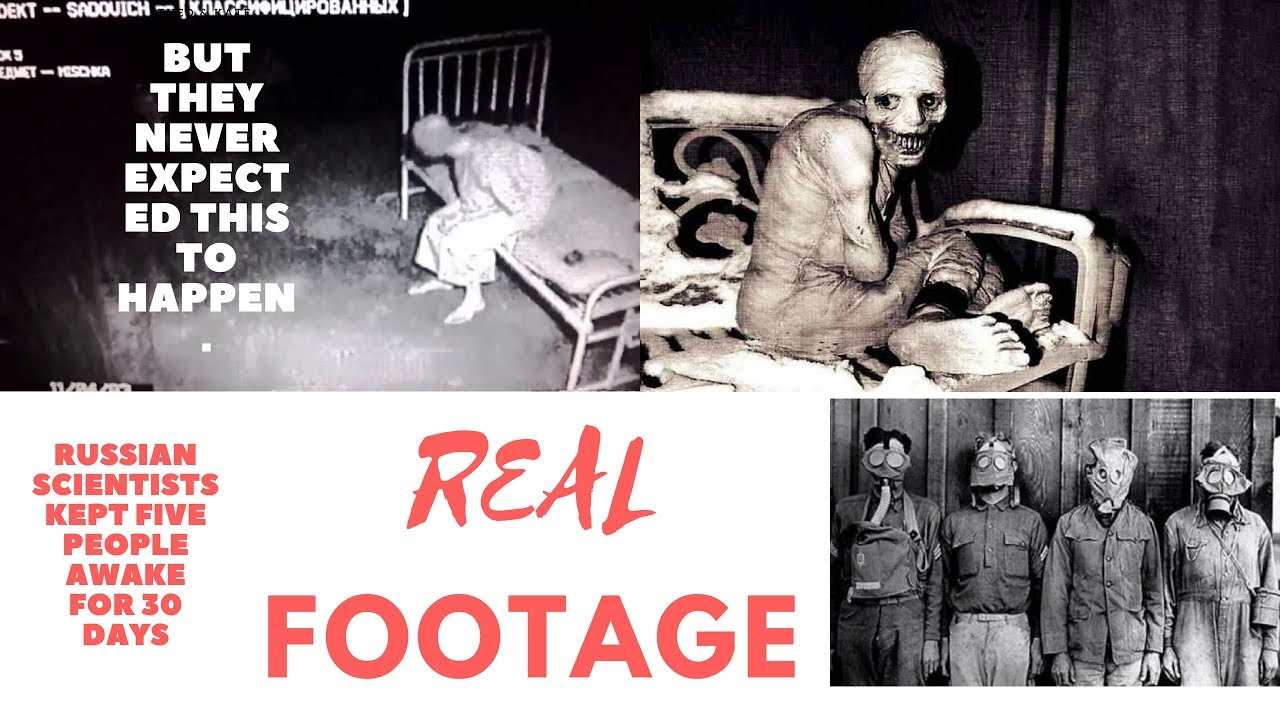 The Russian Sleep Experiment - YouTube